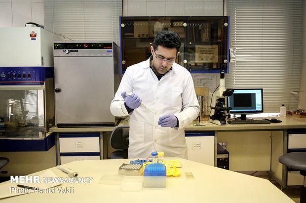 برترین پژوهشگاه های ایران معرفی شدند، اعلام رتبه در آموزش و پژوهش