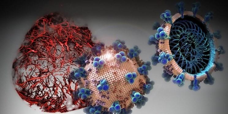 نتایج یک گزارش : همه گیری ویروس کرونا به احتمال زیاد دو سال طول می کشد