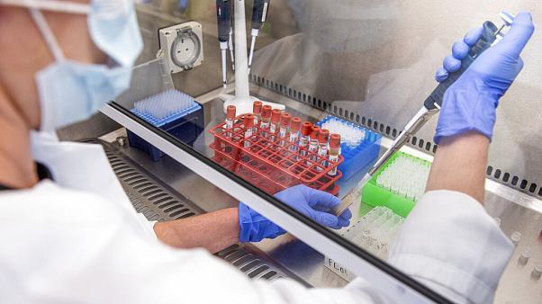 آزمایش غیرانسانی انگلیس برای واکسن کرونا صحت دارد؟