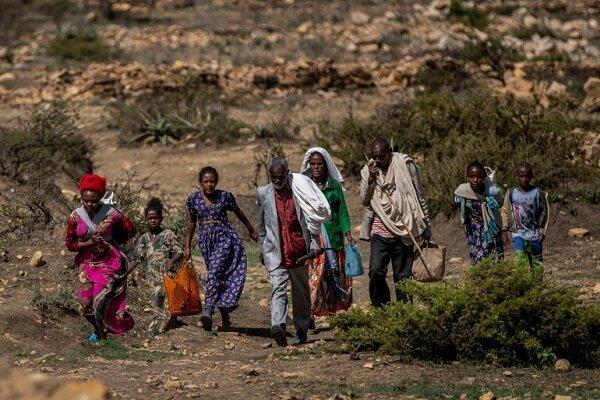 5 میلیون نفر در تیگرای اتیوپی نیازمند دریافت فوری غذا هستند
